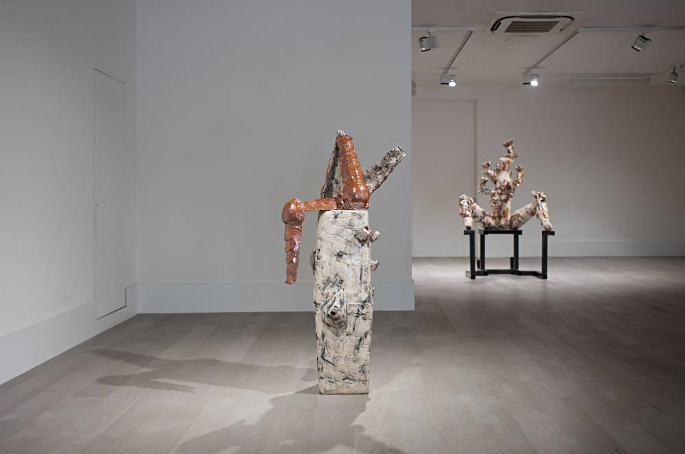 Sophia Contemporary Gallery Veronica Brovall 5