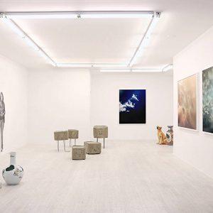 Nina Beier, Judith Hopf, John Miller, Trevor Paglen @Halsey McKay Gallery, New York  - GalleriesNow.net
