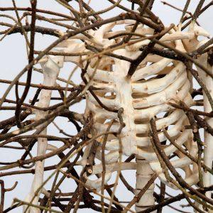 Hugh Hayden: Border States @Lisson Gallery, New York 10th Av, New York  - GalleriesNow.net