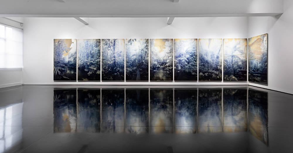 Tolarno Galleries Danie Mellor 1