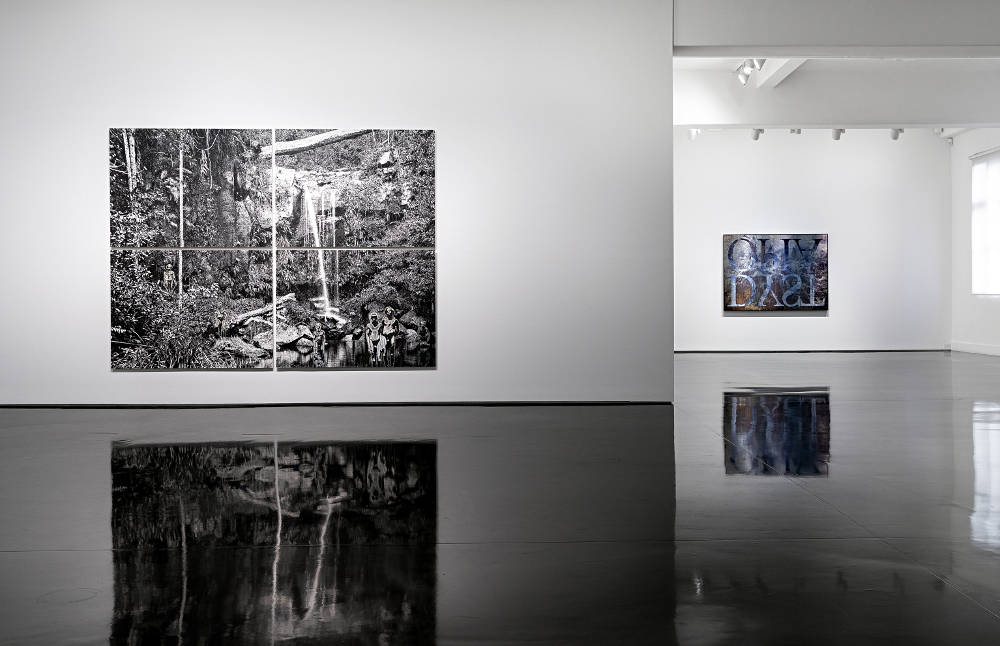 Tolarno Galleries Danie Mellor 2