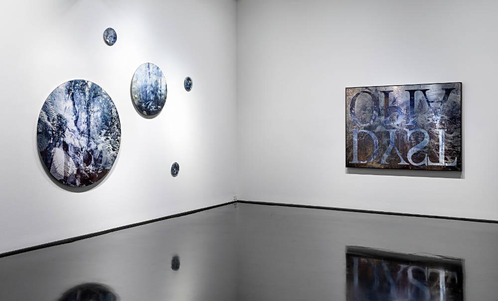 Tolarno Galleries Danie Mellor 4