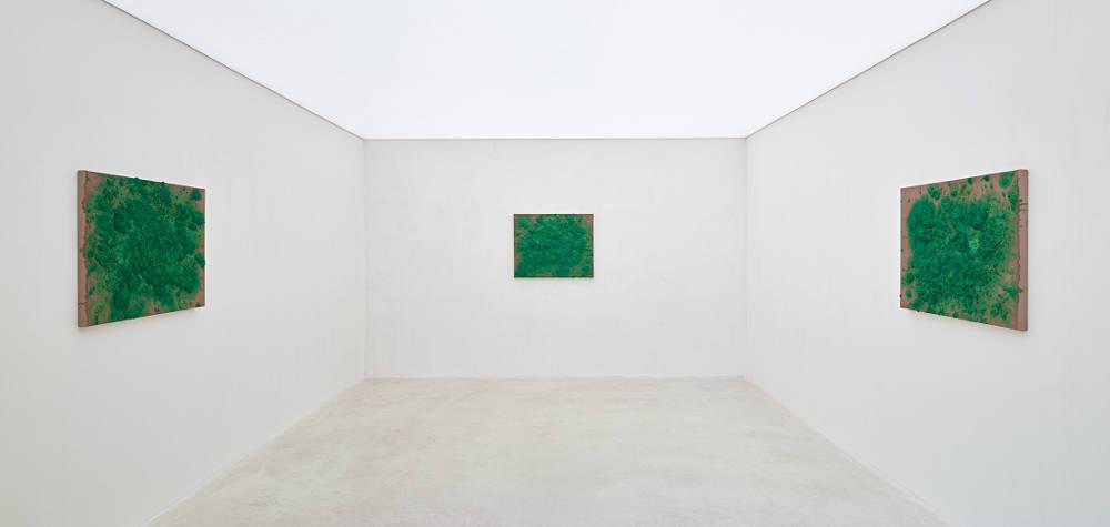 Axel Vervoordt Gallery Bosco Sodi 4