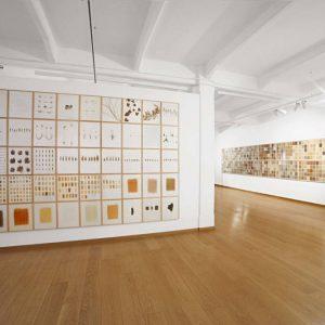 herman de vries: all all all @Cortesi Gallery, Milan, Milan  - GalleriesNow.net