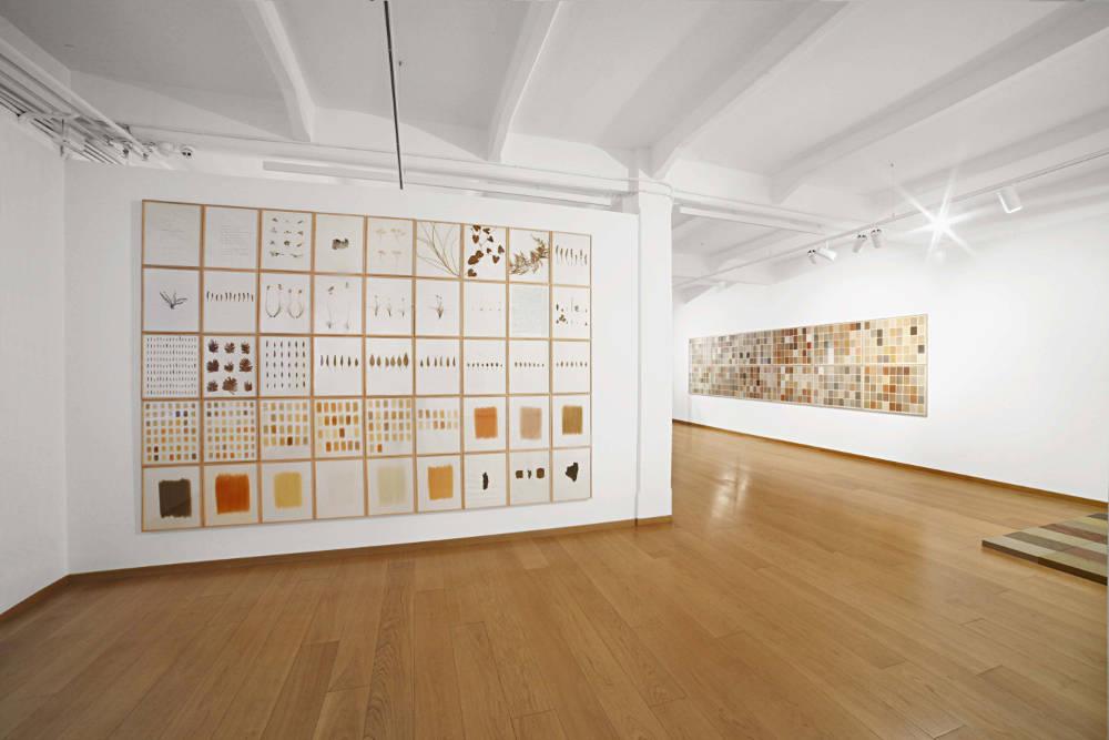 Cortesi Gallery Milan herman de vries 1