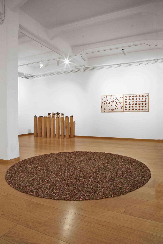 Cortesi Gallery Milan herman de vries 3