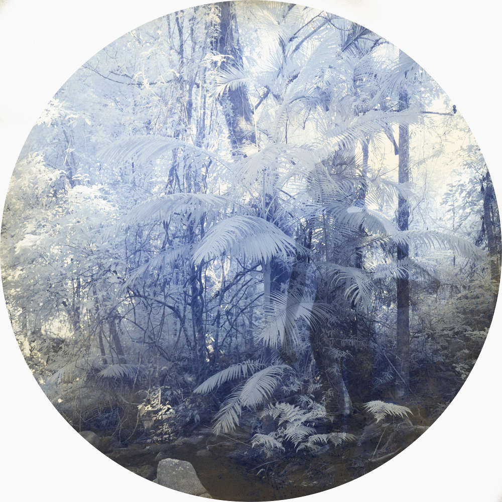 Danie Mellor, We shared the sound of a dream, 2018. Diasec mounted chromogenic print on metallic photographic paper 72 cm diameter, Edition of 3 + 2AP