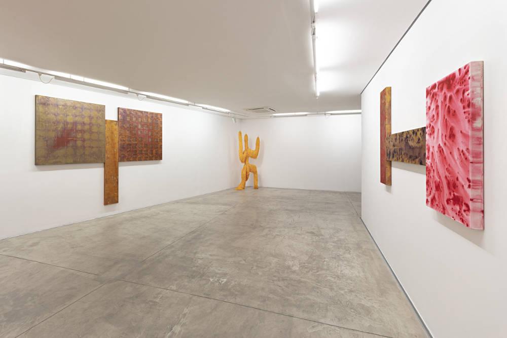 Galeria Nara Roesler Sao Paulo Antonio Dias 6