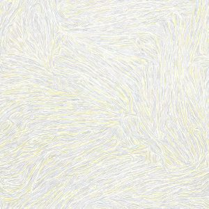 Sol LeWitt: Lines in All Directions @Mignoni Gallery, New York  - GalleriesNow.net