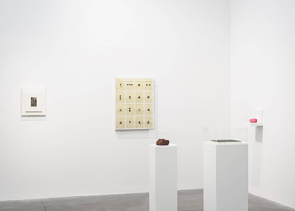 Alison Jacques Gallery Hannah Wilke 8