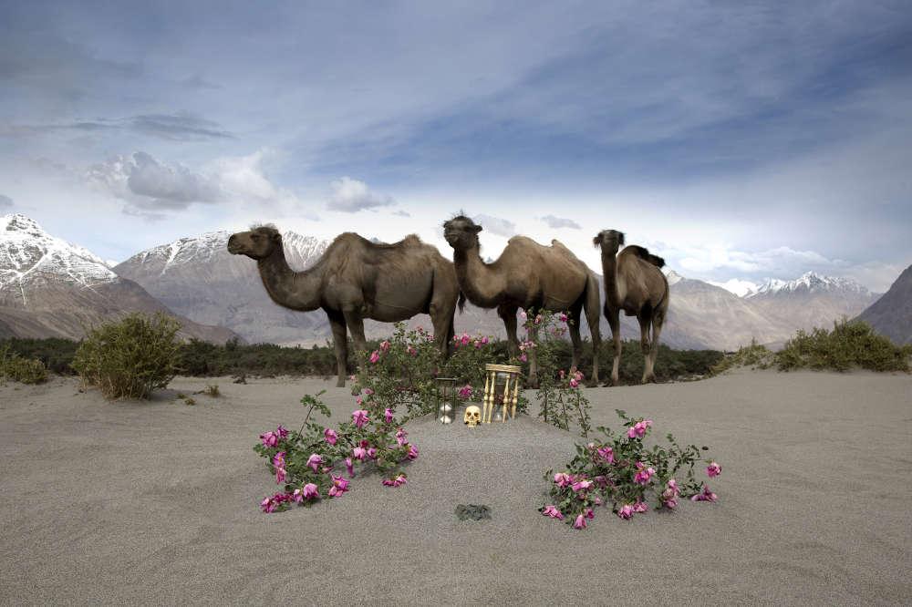 Anne de Carbuccia (b. New York, 1968), Silk Route. Nubra Valley, Ladakh, India, June 2015. Photography. Ed. 2/5 69 x 102.5 cm 27 1/8 x 40 3/8 in.