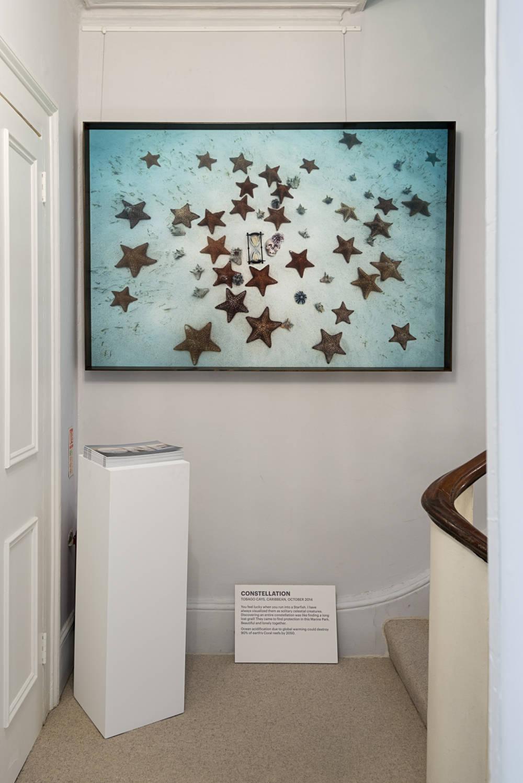 Brun Fine Art One Planet One Future by Anne De Carbuccia 3