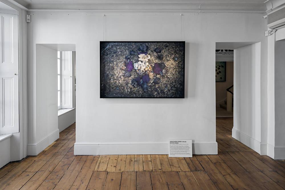 Brun Fine Art One Planet One Future by Anne De Carbuccia 6