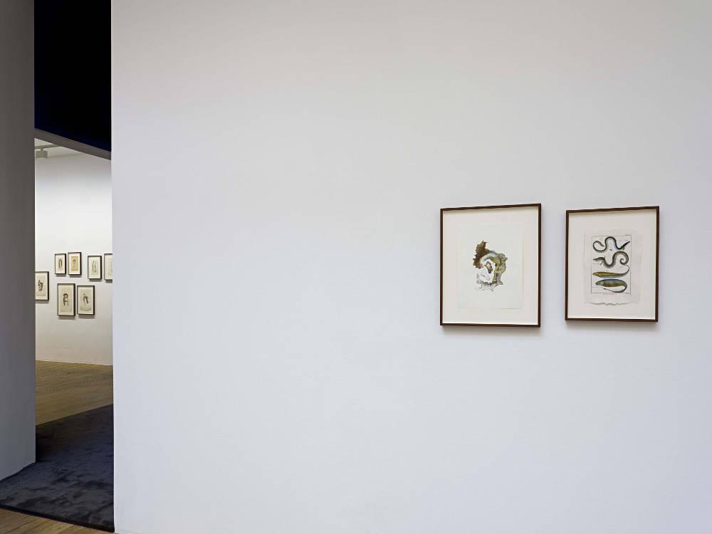 Galerie Chantal Crousel Anri Sala 1