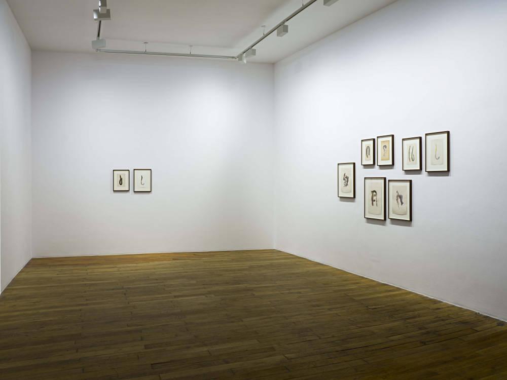 Galerie Chantal Crousel Anri Sala 2