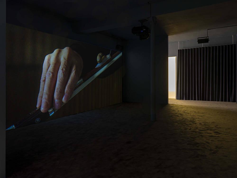 Galerie Chantal Crousel Anri Sala 7