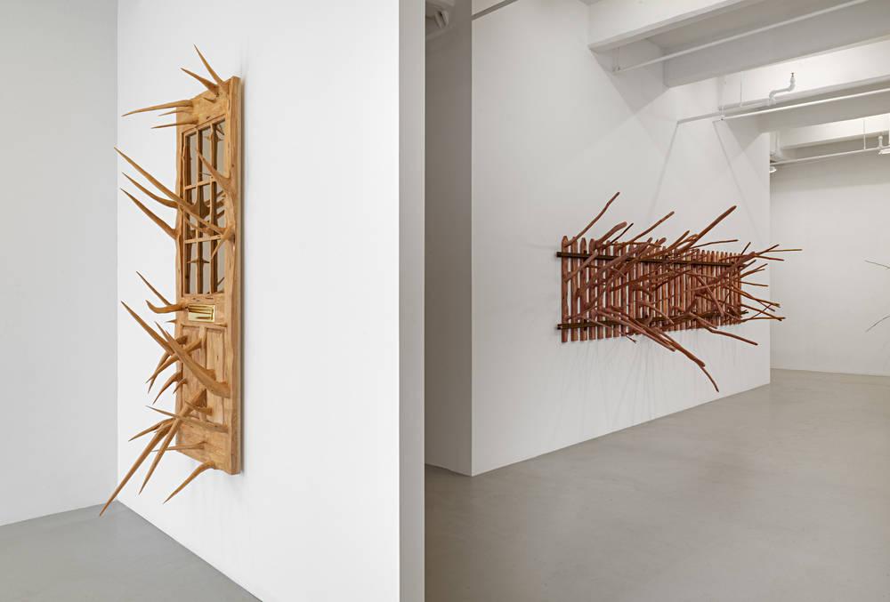 Lisson Gallery New York Hugh Hayden 2