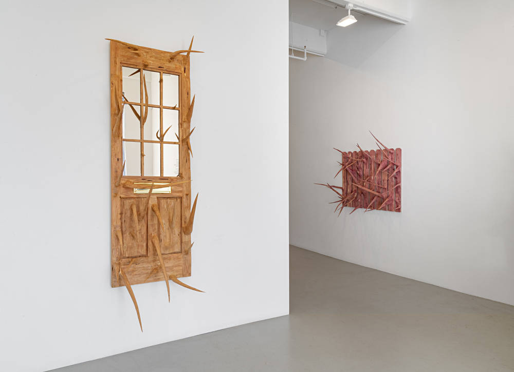 Lisson Gallery New York Hugh Hayden 3