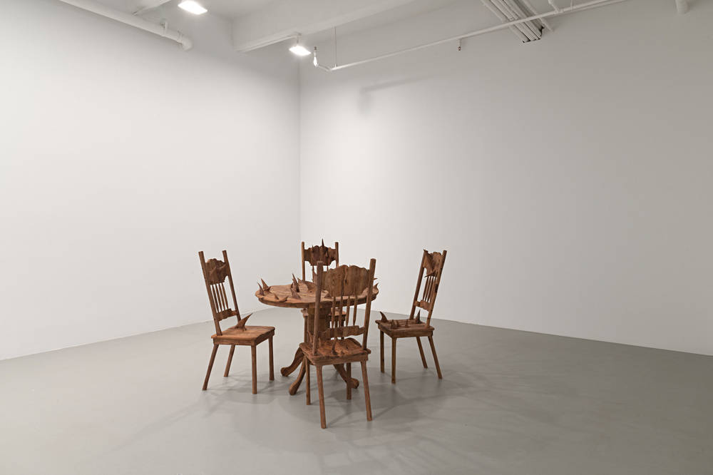 Lisson Gallery New York Hugh Hayden 6