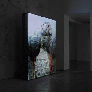 Pierre Huyghe: UUmwelt @Serpentine Gallery, London  - GalleriesNow.net