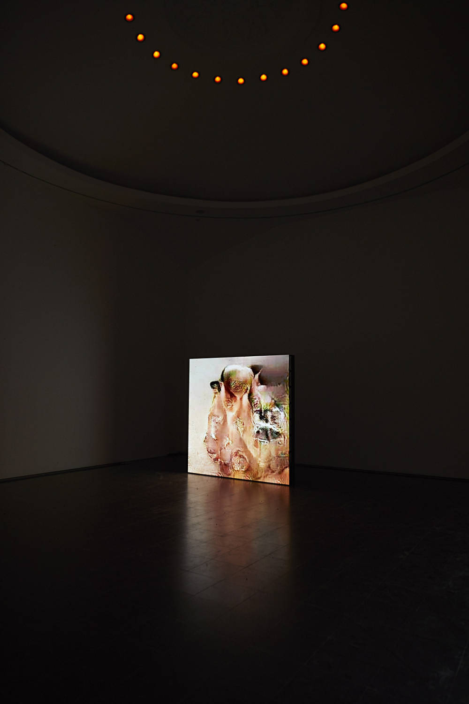 Serpentine Gallery Pierre Huyghe 4