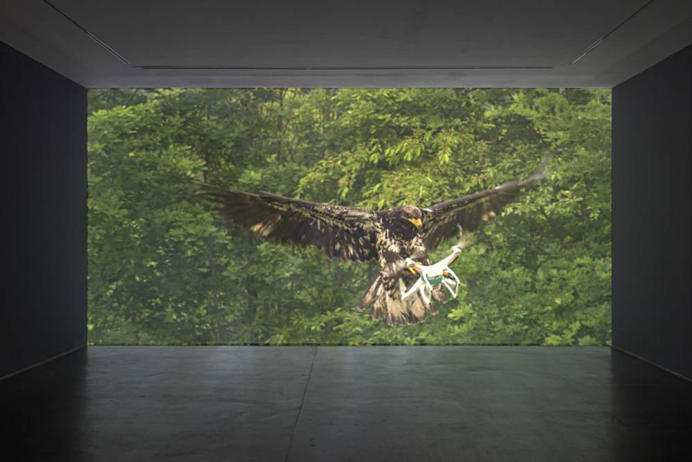 VNH Gallery Mircea Cantor 3