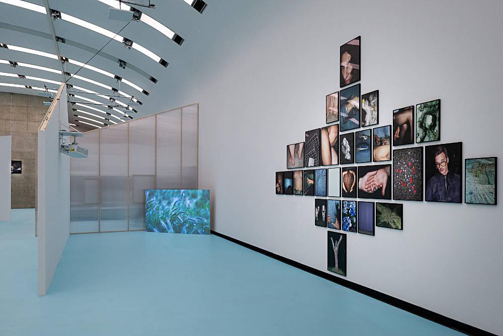 Kunsthalle Wien Museumsquartier Antarctica 4