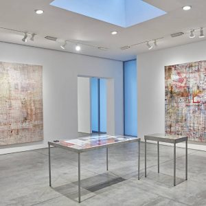Mandy El-Sayegh: MUTATIONS IN BLUE, WHITE AND RED @Lehmann Maupin W 22 St, New York  - GalleriesNow.net