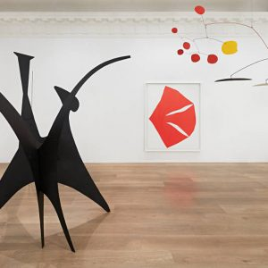 Calder/Kelly @Lévy Gorvy, New York  - GalleriesNow.net