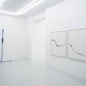 Franziska Furter: Waves and Particles @Lullin + Ferrari, Zürich  - GalleriesNow.net
