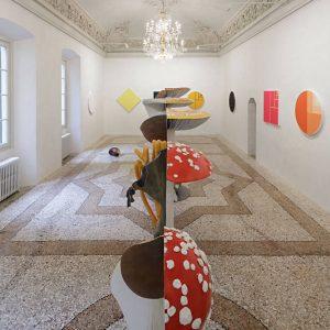 Carsten Höller: Mushroom Mathematics @Massimo De Carlo, Milan / Belgioioso, Milan  - GalleriesNow.net