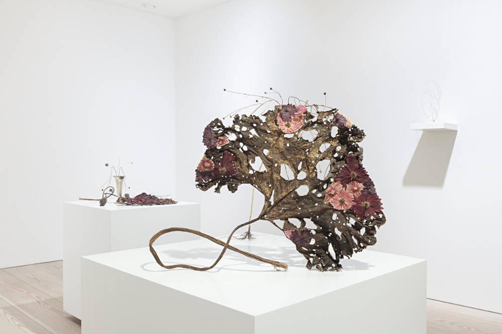 Galerie Forsblom Charlotta Ostlund 1