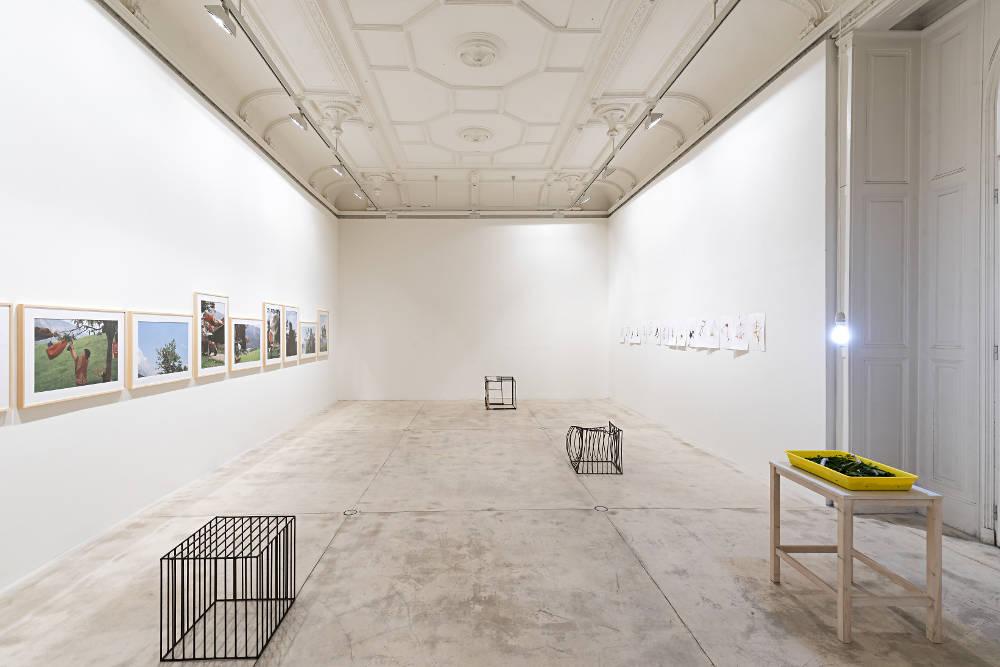 Galerie Krinzinger Lois Weinberger 1