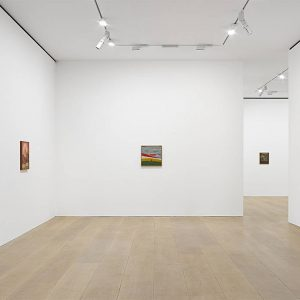 Amadeo Luciano Lorenzato @David Zwirner, London, London  - GalleriesNow.net