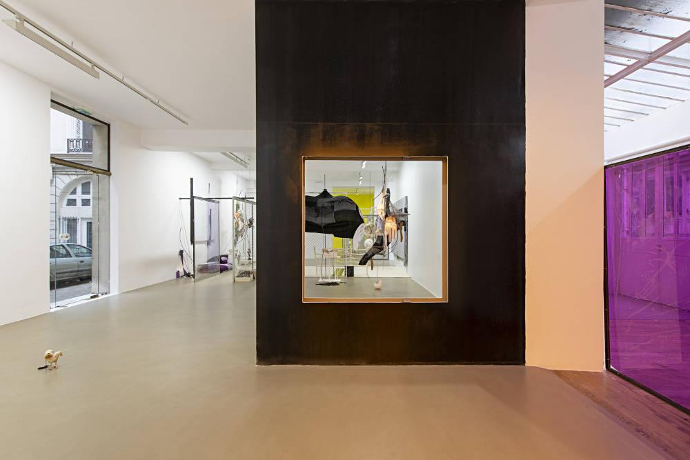 Galerie Chantal Crousel David Douard 3