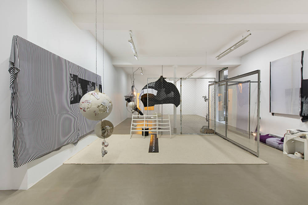 Galerie Chantal Crousel David Douard 6