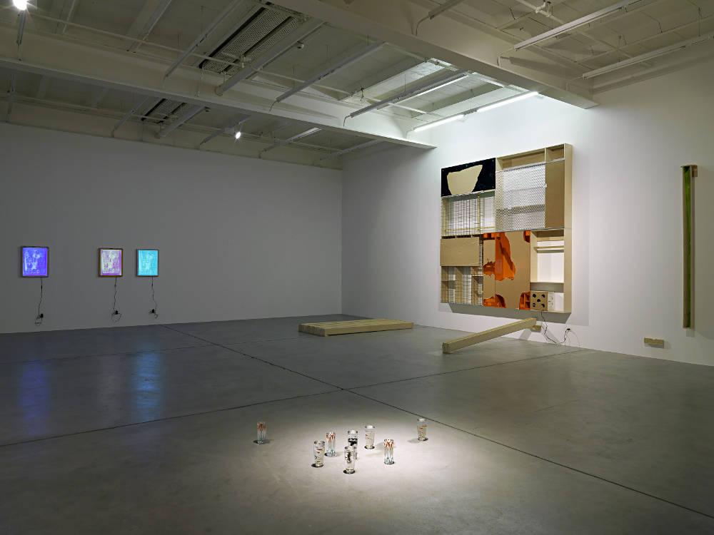 Galerie Eva Presenhuber NO THING Pope L Adam Pendleton 4