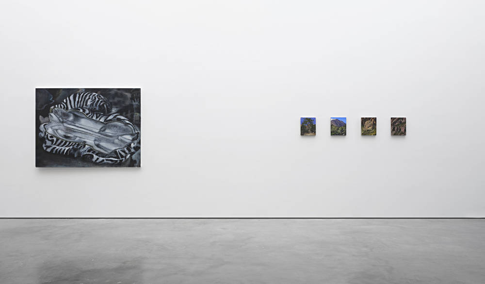 Lisson Gallery New York The Rest 1