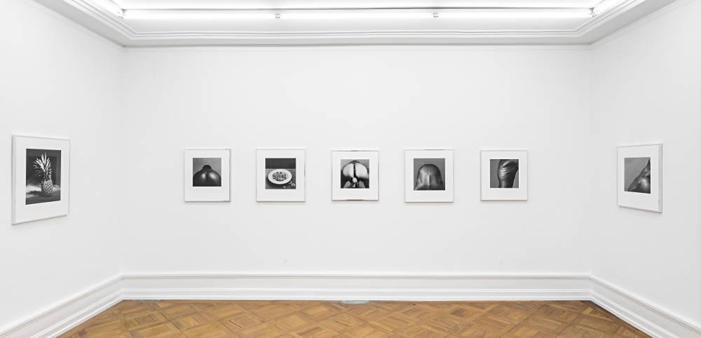 Mai 36 Galerie Robert Mapplethorpe 2