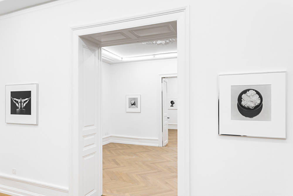 Mai 36 Galerie Robert Mapplethorpe 3