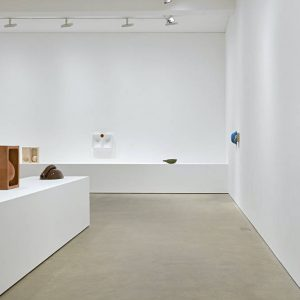 Nicolas Deshayes: Swans @Modern Art Vyner Street, London  - GalleriesNow.net