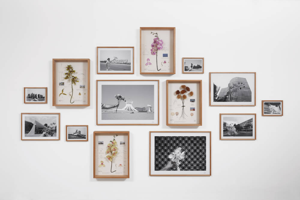 Alberto Baraya, Estudos comparados modernistas [Compared modernist studies], 2011. Photographs, found objects and drawing on cardboard ed 2/3 200 x 300 cm 78.7 x 118.1 in