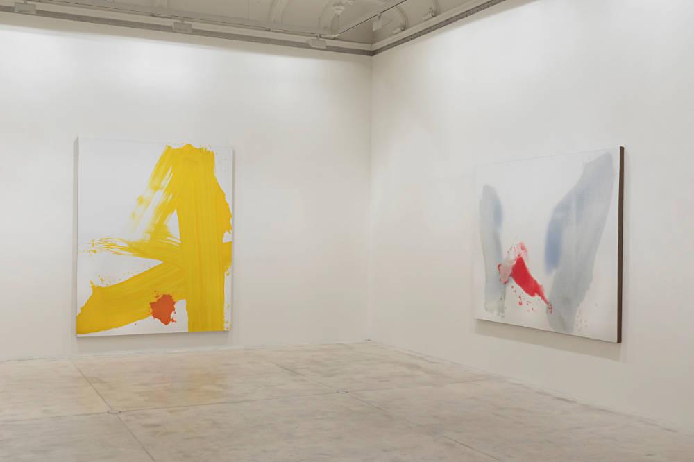 Galerie Krinzinger Zhang Wei 3