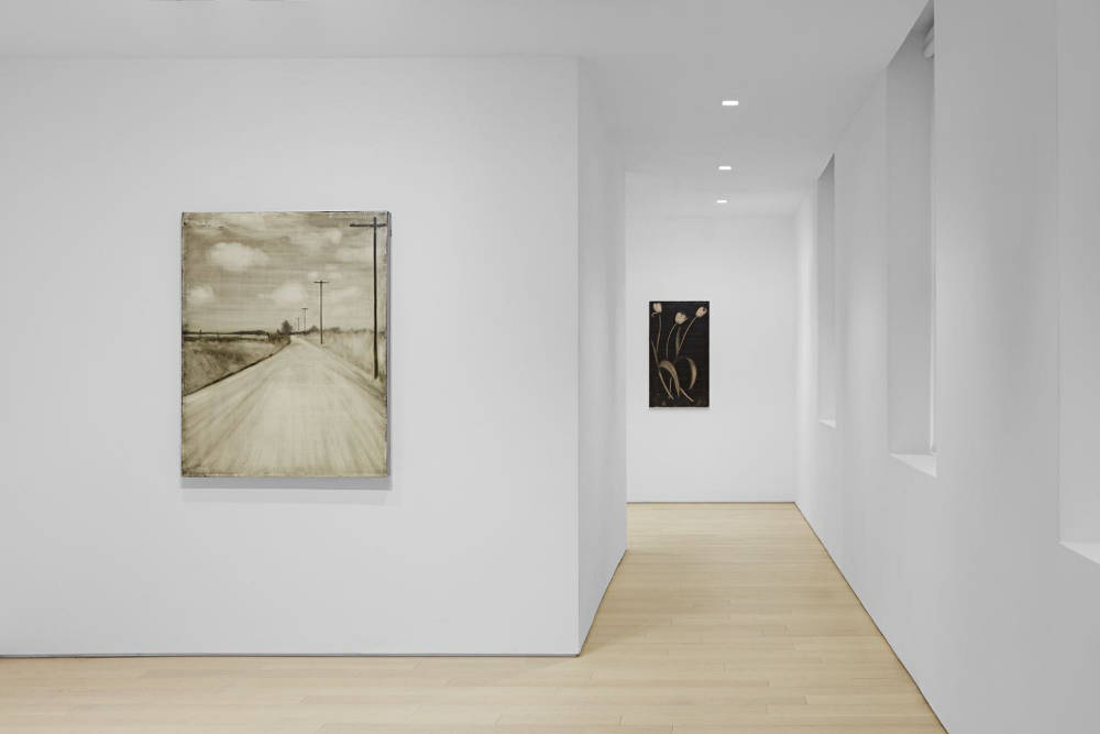 Almine Rech Gallery New York Joe Andoe 1