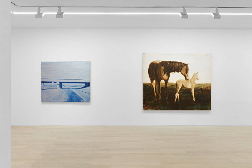 Almine Rech Gallery New York Joe Andoe 2