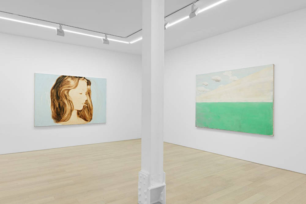 Almine Rech Gallery New York Joe Andoe 3