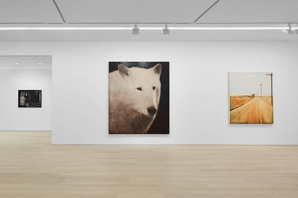 Almine Rech Gallery New York Joe Andoe 4