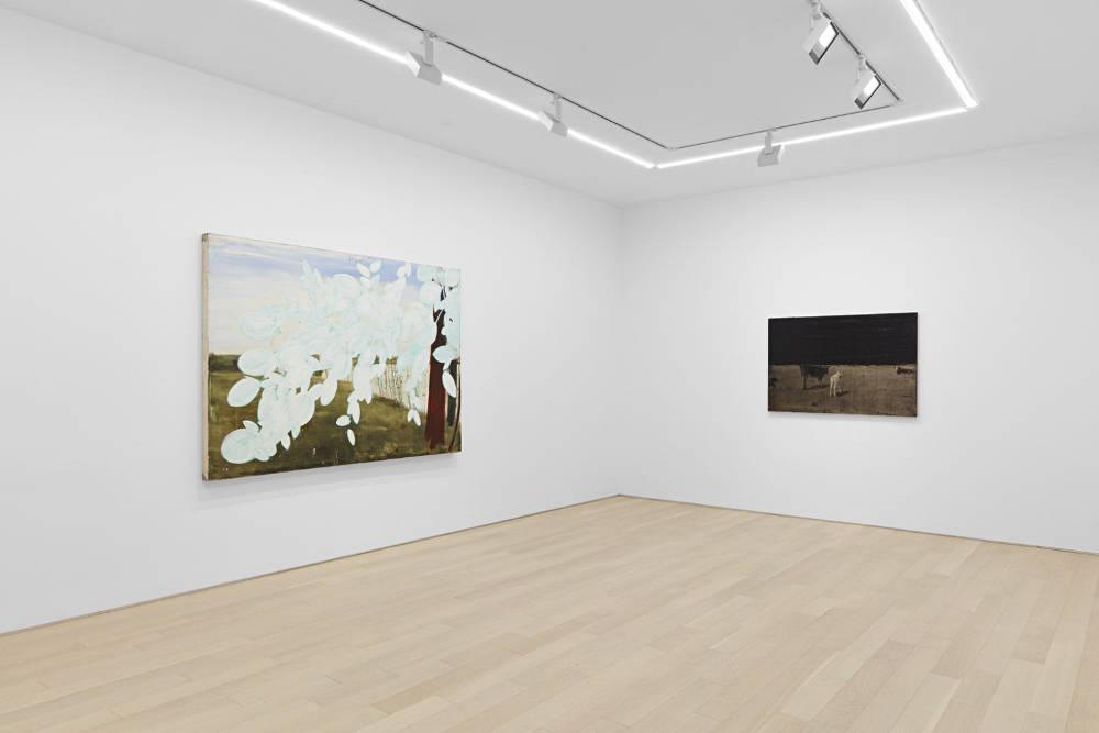 Almine Rech Gallery New York Joe Andoe 6