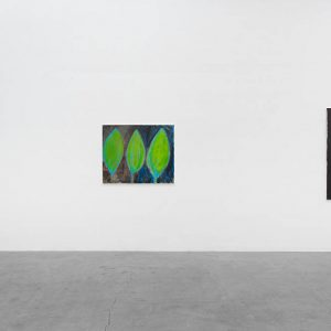 Rosalind Nashashibi @GRIMM, New York  - GalleriesNow.net