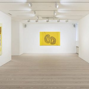 Hannu Väisänen: All About Yellow @Galerie Forsblom, Helsinki  - GalleriesNow.net